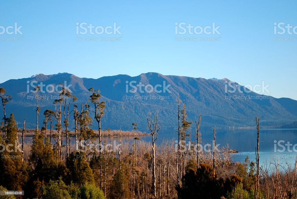 West Coast Waterscape, Lake Brunner, New Zealand royalty-free stock photo