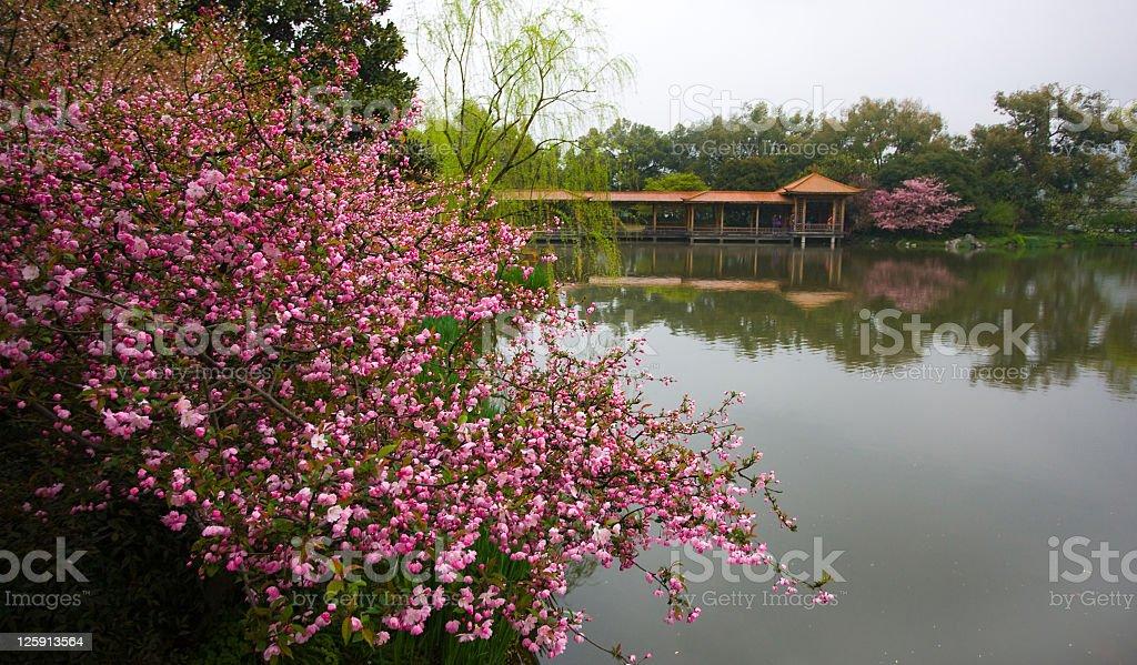 West Lake - Hangzhou, China royalty-free stock photo