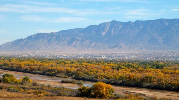 West mesa river view of the Rio Grande, cottonwood trees in the Bosque, and Albuquerque at the base of the Sandia mountains A view from the west mesa of the Rio Grande, cottonwood trees in the Bosque (Spanish for woods), and the city of Albuquerque at the base of the Sandia mountains, part of the Rocky Mountain chain in the Southwest, USA. cottonwood tree stock pictures, royalty-free photos & images