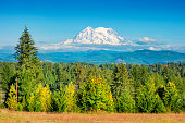 Stock photograph of the west side of Mount Rainier in Washington, USA during an autumn sunny day.