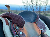 Western barrel racing saddle on horse with saddle pad with blue sky background