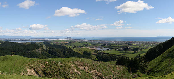 Western Bay of Plenty - Panorama