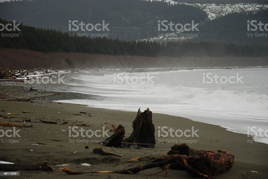 Western Canada Remote Coastline royalty-free stock photo