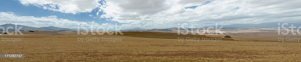 Western Cape landscape in summer stock photo