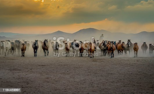 Western cowboy riding horses with in cloud of dust in the sunset
