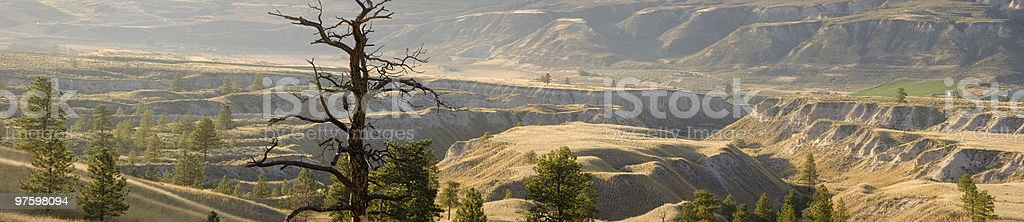 Western grasslands . . . royalty-free stock photo