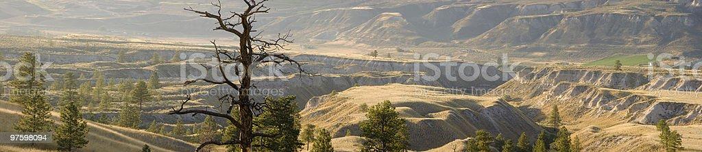 Des prairies de l'ouest. . . photo libre de droits