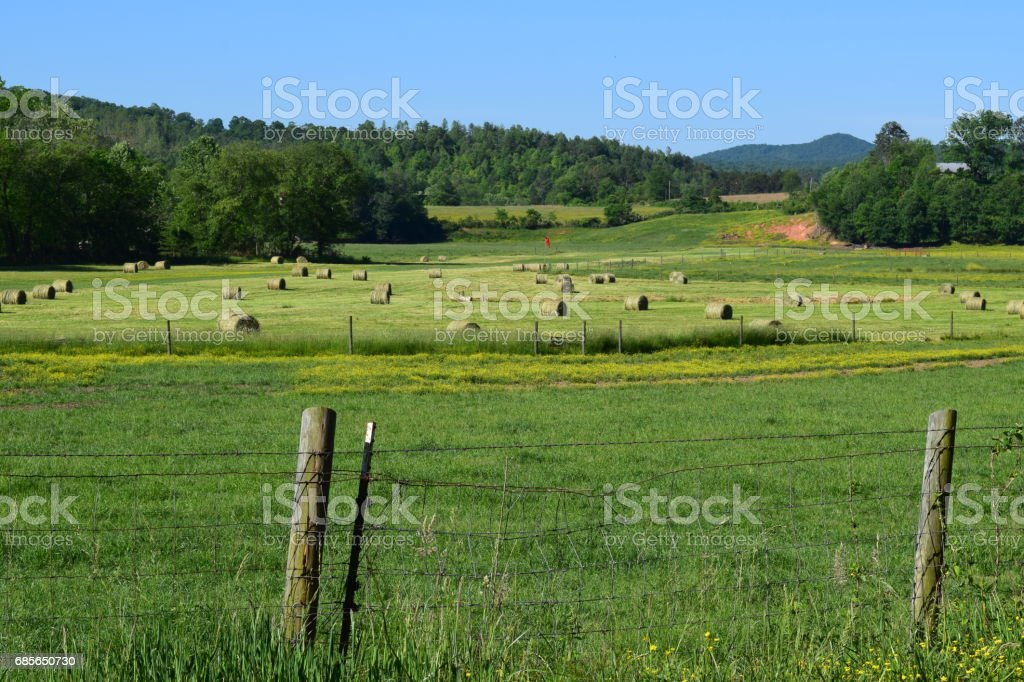 Western NC farmer's field with hay bales stock photo