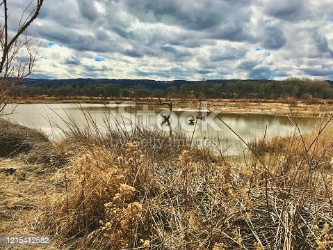 Still Natural Pond and Cloudy Sky Western Outdoors Nature Preserve in the Colorado River Basin (Shot with iPhone 7 Plus 12mp 4032 × 3024 photos professionally retouched - Lightroom / Photoshop)