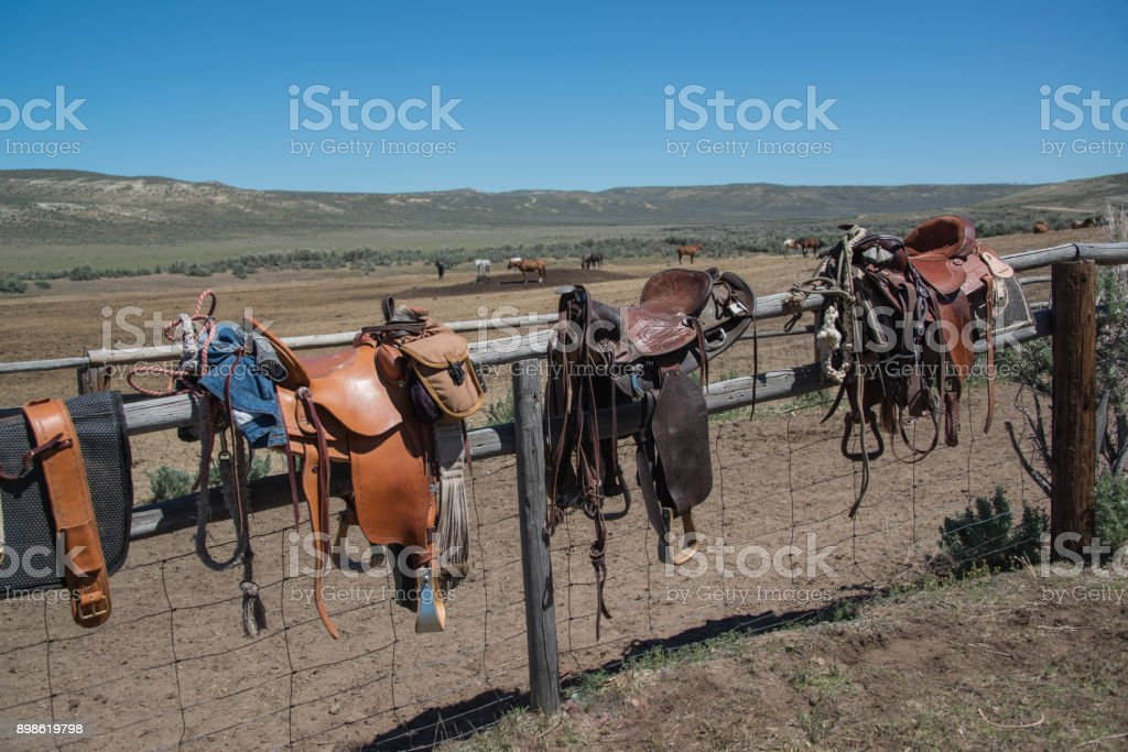Western riding saddles, bridles and horse blankets drying on wooden corral post stock photo