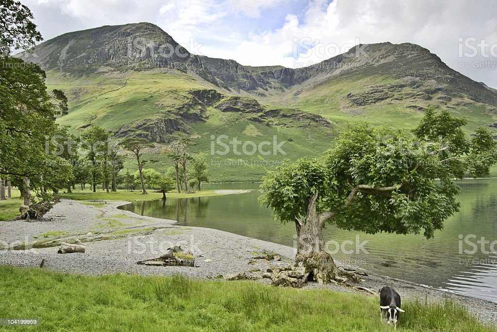 Western shore of Buttermere royalty-free stock photo