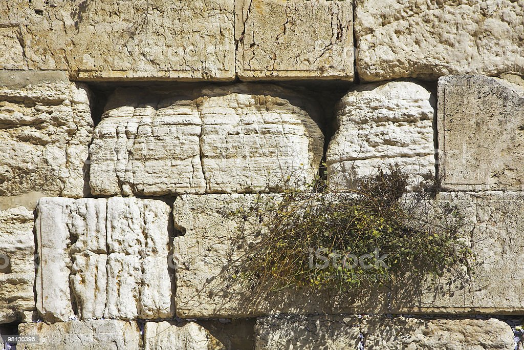 Muro del pianto di Gerusalemme Tempio foto stock royalty-free