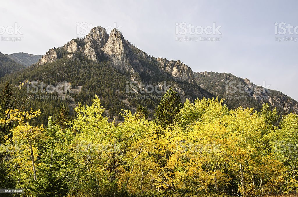 Westminster Spires with Aspens stock photo