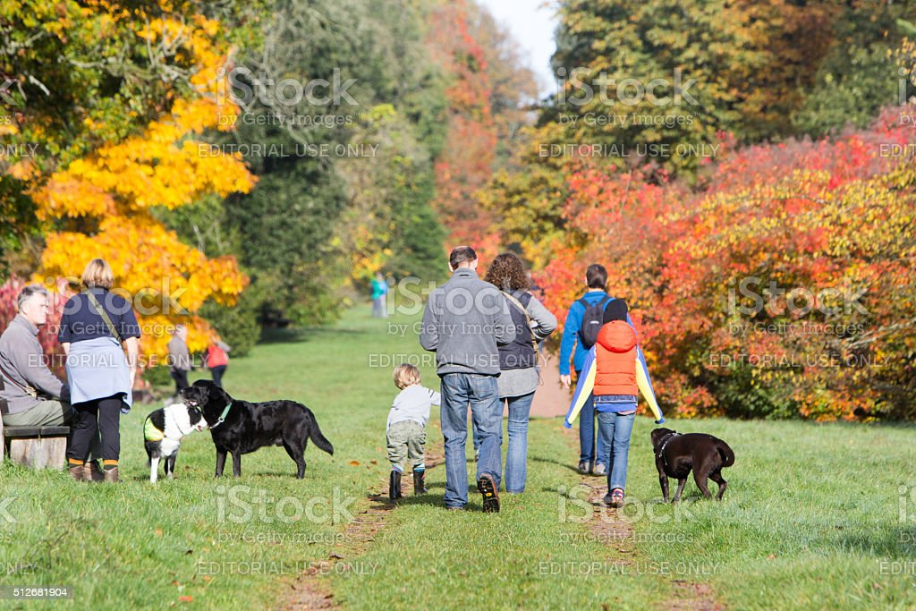 Westonbirt in Gloucestershire, England stock photo