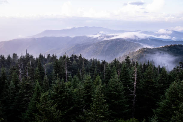 Westward View from Clingmans Dome stock photo