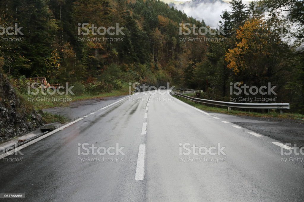 wet asphalt road through the mountain forest in switzerland royalty-free stock photo