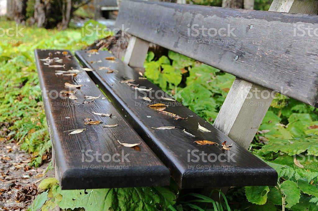wet bench stock photo