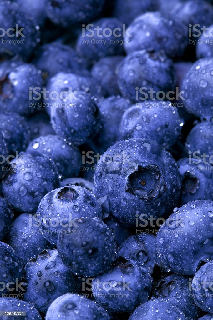 Wet Blueberries royalty-free stock photo