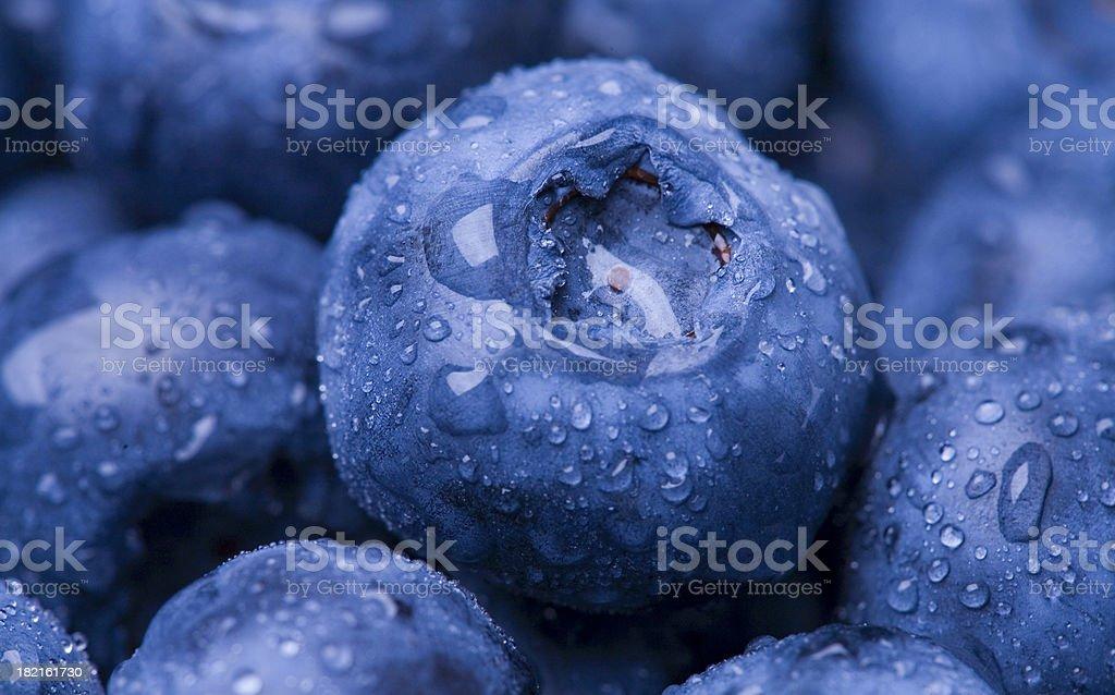 Wet Blueberry Closeup royalty-free stock photo
