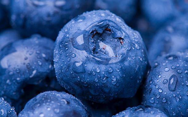Wet Blueberry Closeup stock photo