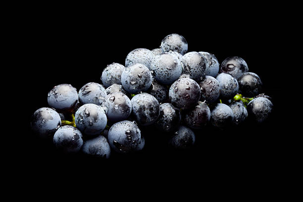 Wet Bunch of Black Grapes laying stock photo