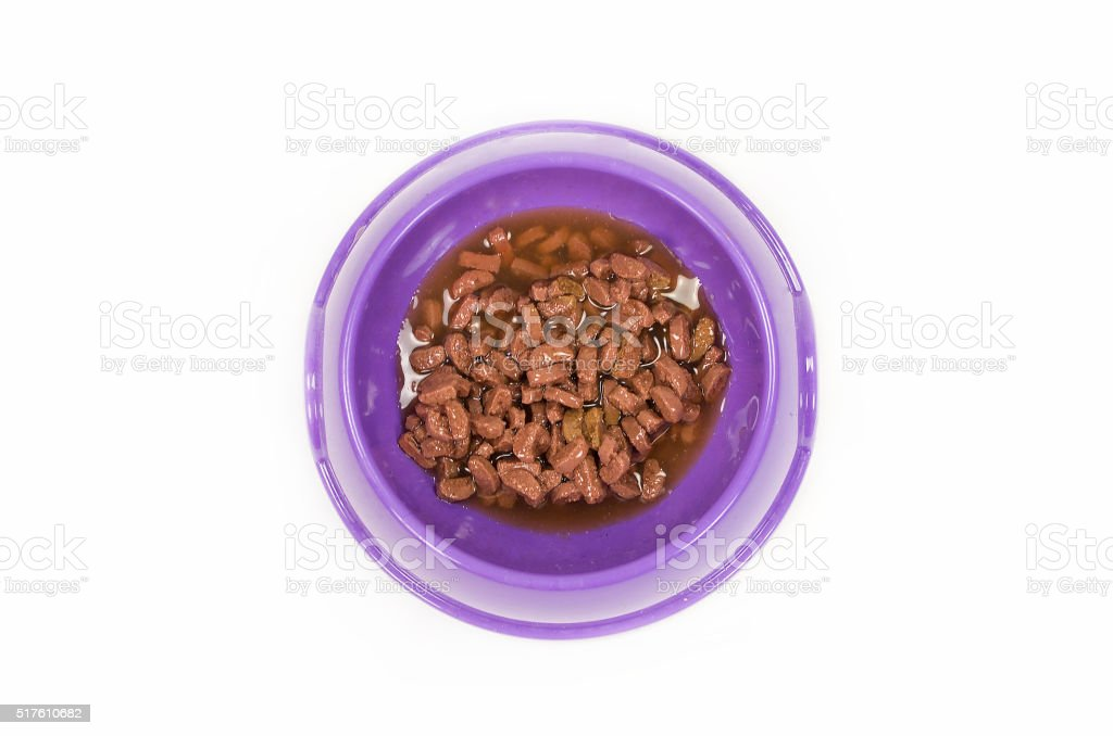 wet cat food in yellow bowl isolated on white stock photo