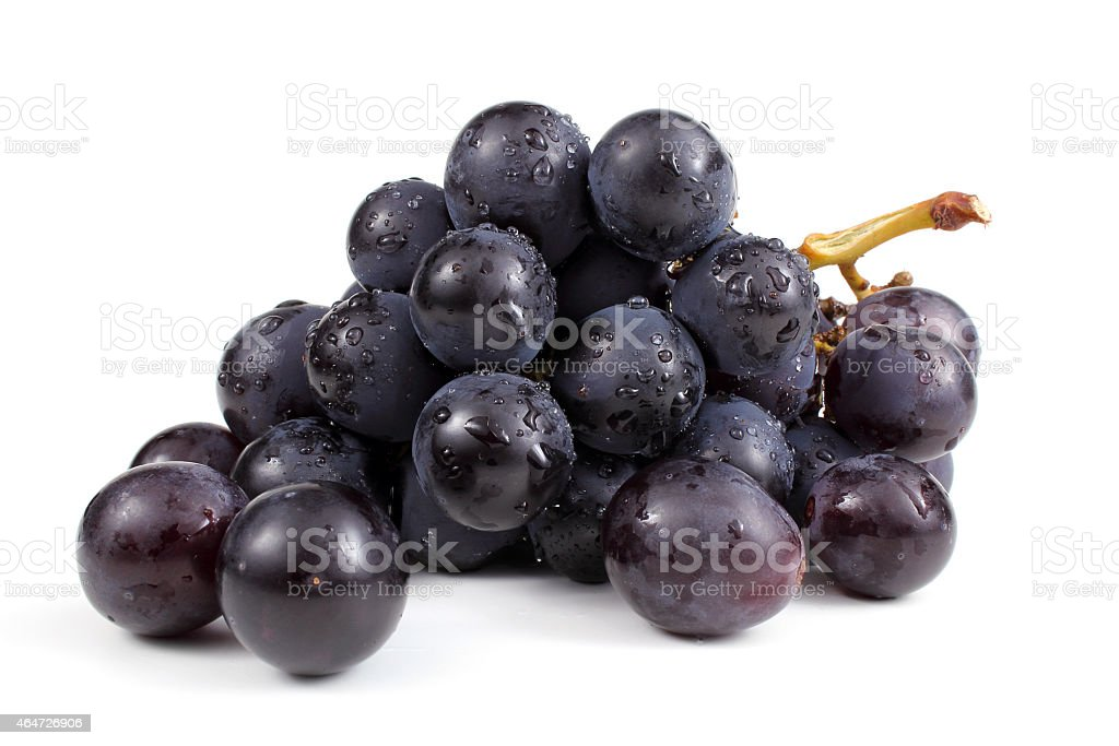 Wet cluster of blue grapes stock photo