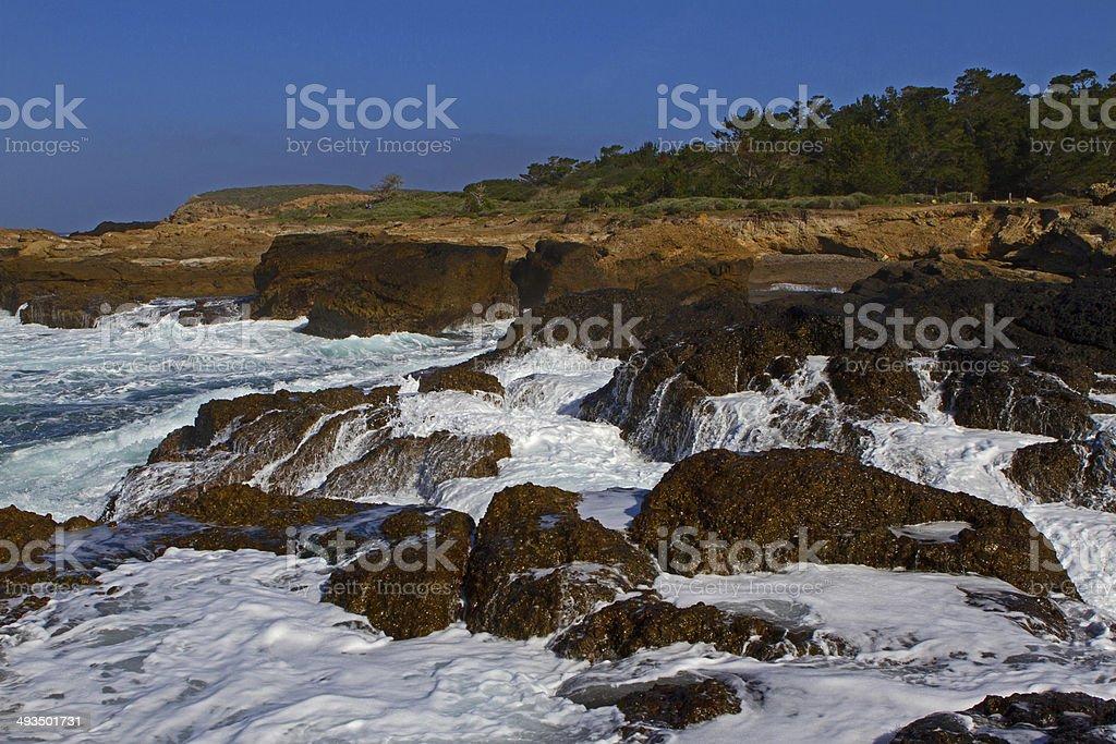 Wet coastline royalty-free stock photo