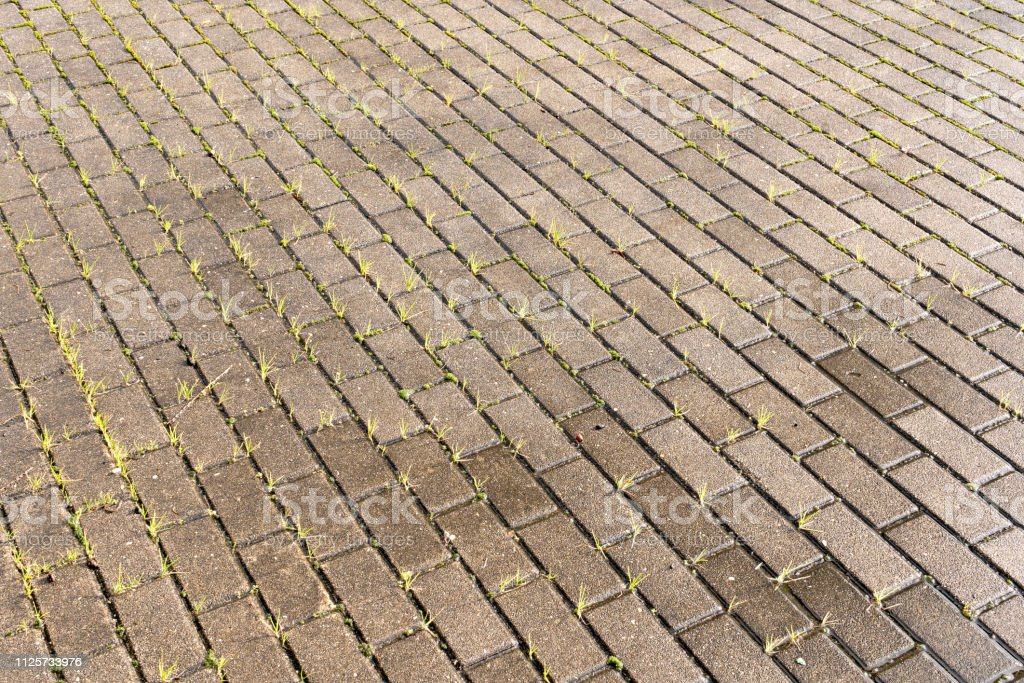 Wet Concrete pavement with green grass stock photo