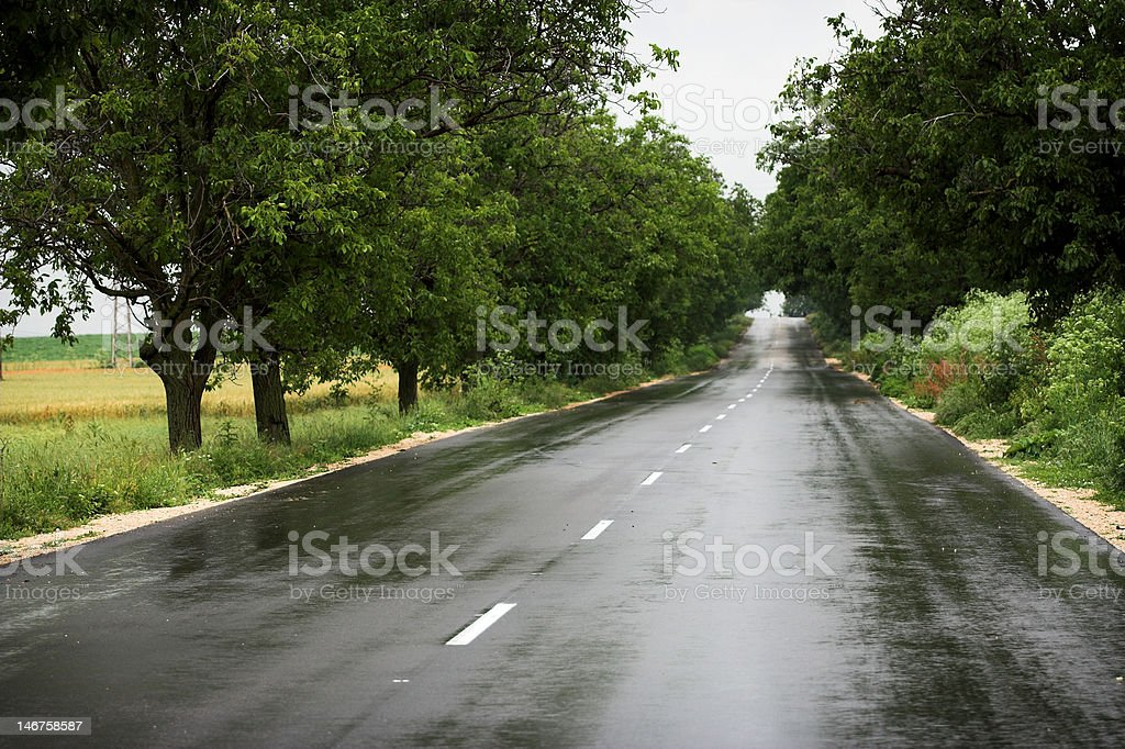 wet country road royalty-free stock photo