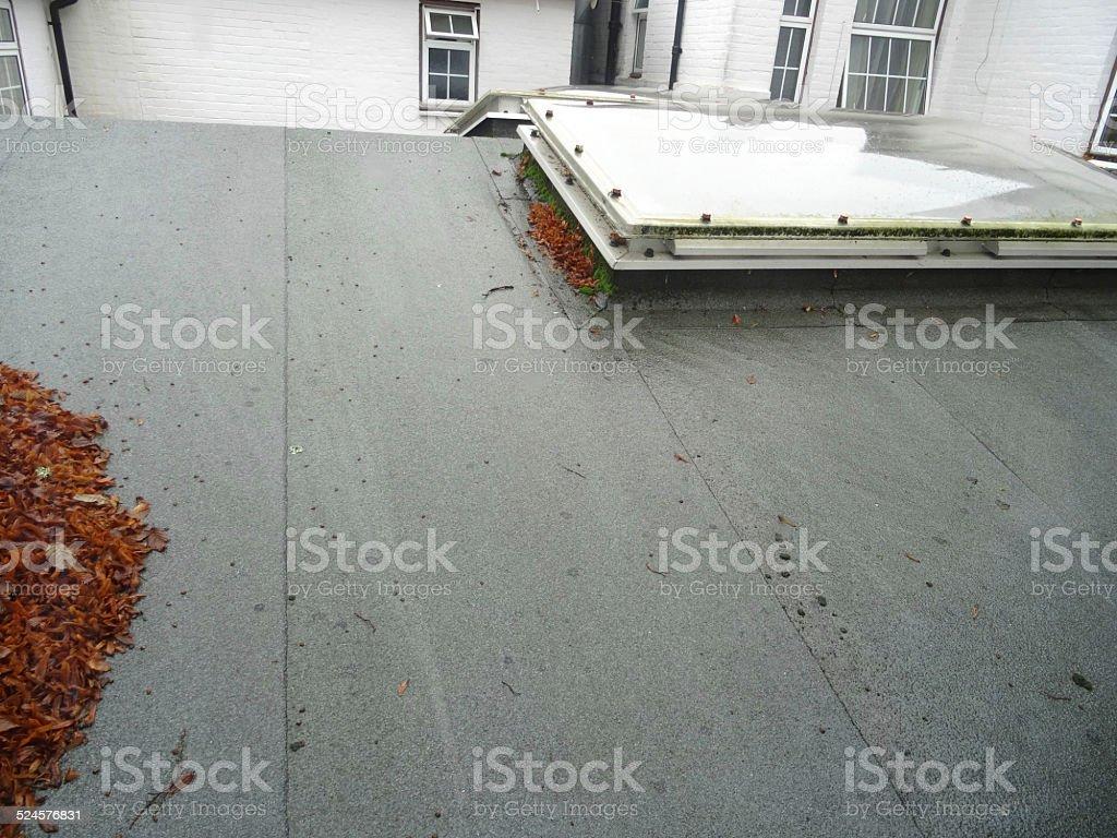 Wet felt flat roof, bowed skylights / rooflight windows image, leaves stock photo