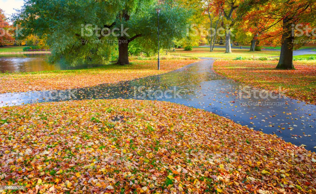 Wet footpath after rain in autumn royalty-free stock photo