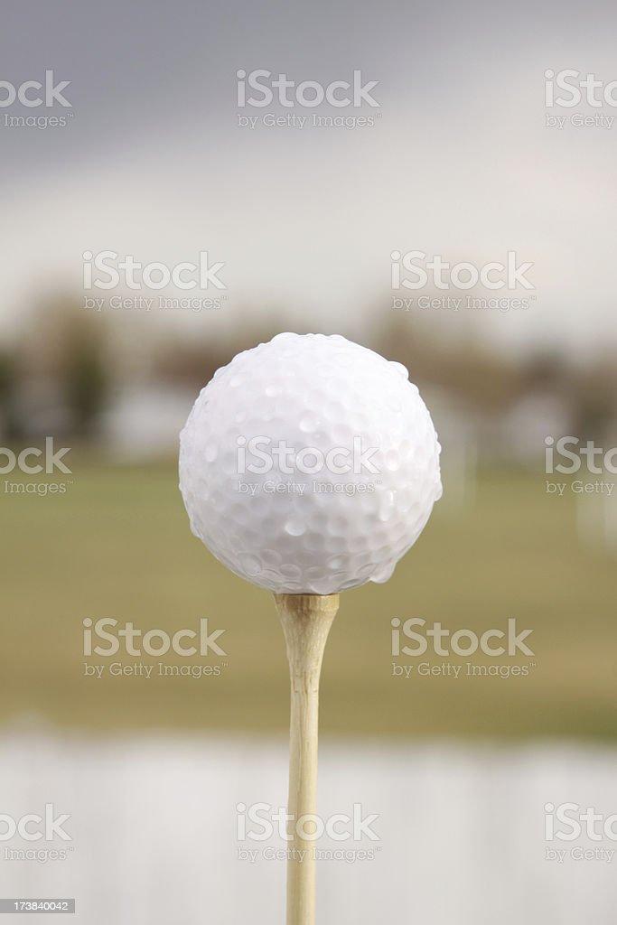 A teed up wet golf ball.For similar golf shots click below: