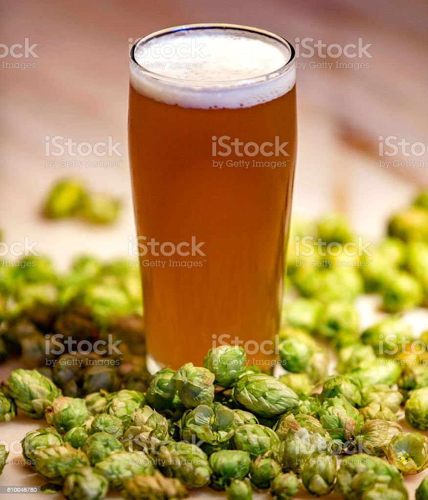 Wet hop india pale ale stock photo