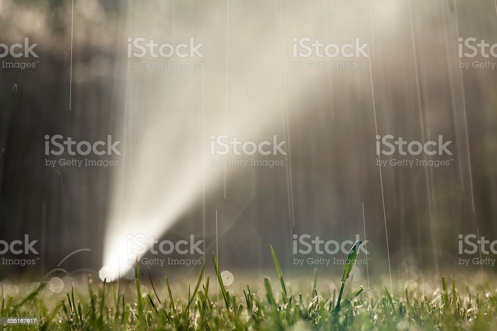 Wet lawn with sprayer in the background stock photo