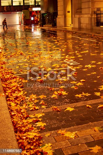 istock Wet leaves on the road in rain in london and the illuminated path 1148697552