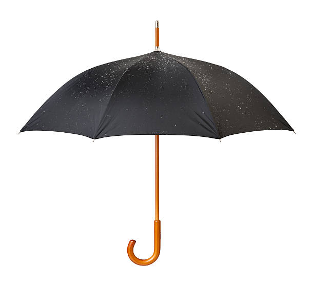 Wet Open Black Umbrella with a clipping path stock photo