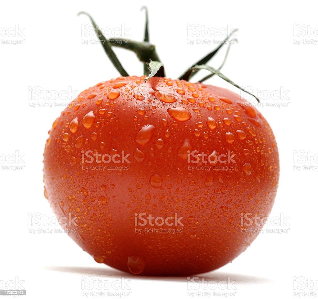 wet organic ripe vine tomato against white royalty-free stock photo