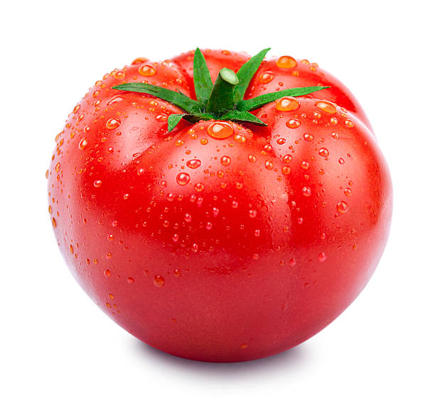 Wet organic ripe vine tomato against white stock photo