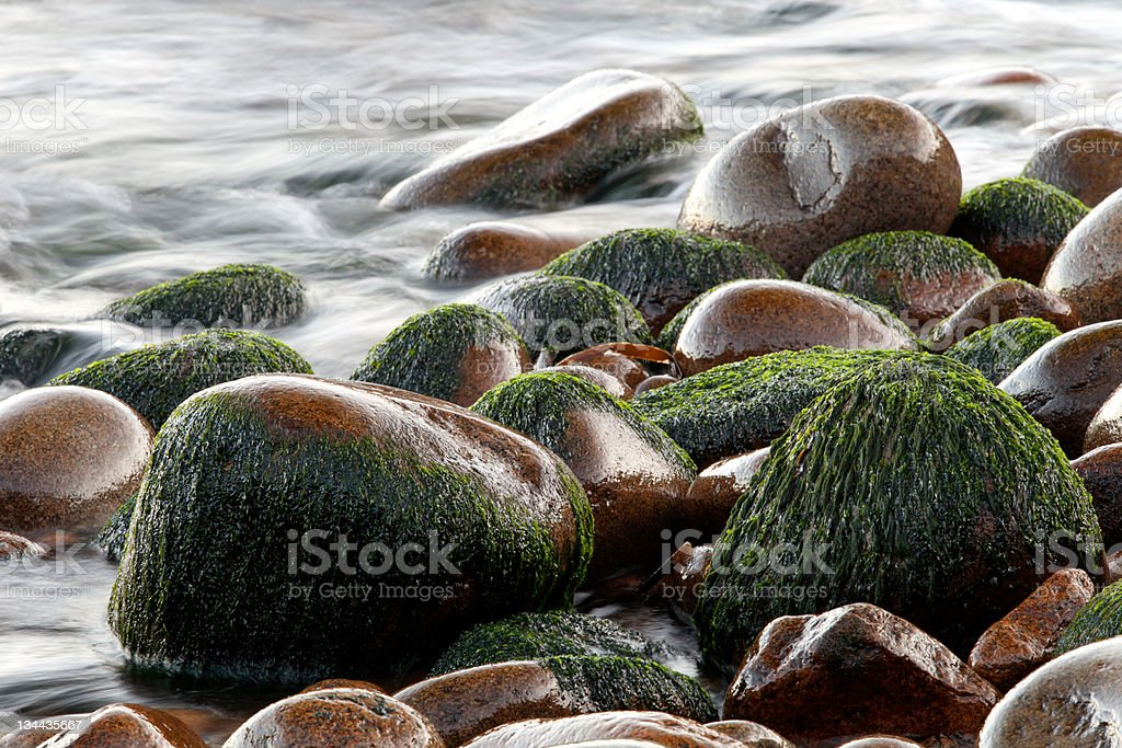 Wet pebbles with blurred water royalty-free stock photo