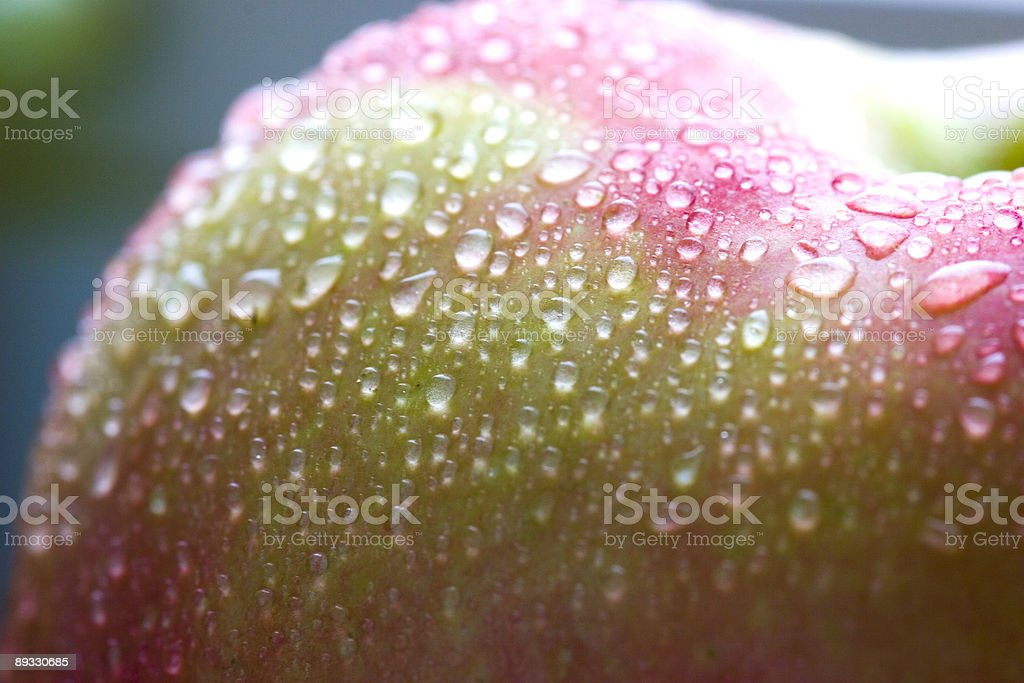 Wet pink apple macro royalty-free stock photo