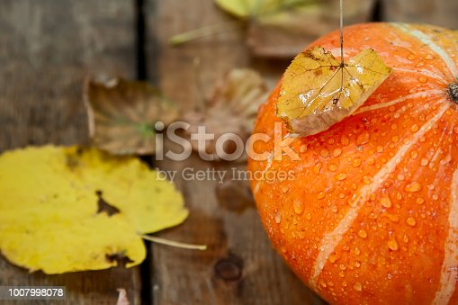 istock wet pumpkin with one dried yellow leaf in autumn wooden background 1007998078