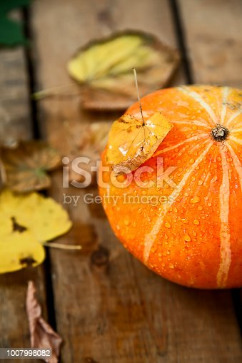 istock wet pumpkin with one dried yellow leaf in autumn wooden background 1007998082