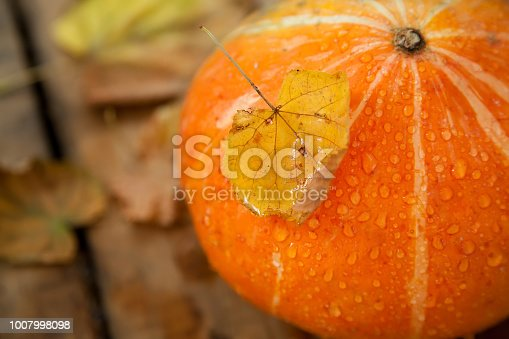 istock wet pumpkin with one dried yellow leaf in autumn wooden background 1007998098