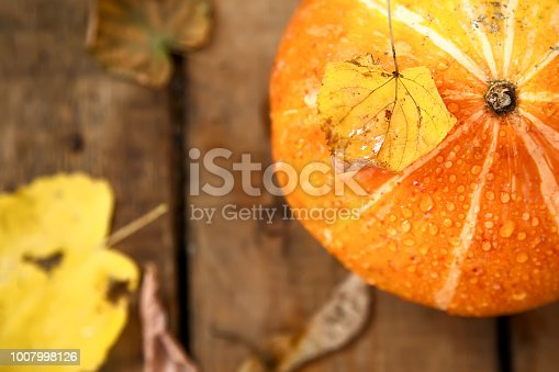 istock wet pumpkin with one dried yellow leaf in autumn wooden background 1007998126