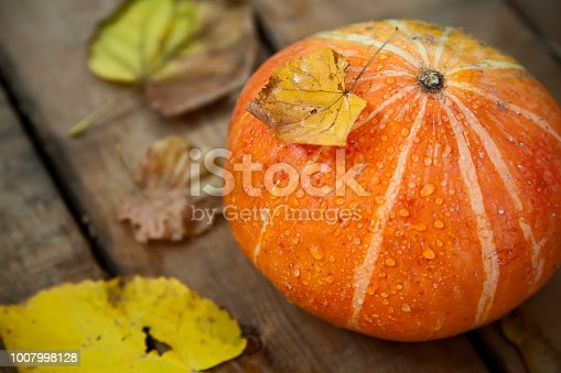 istock wet pumpkin with one dried yellow leaf in autumn wooden background 1007998128