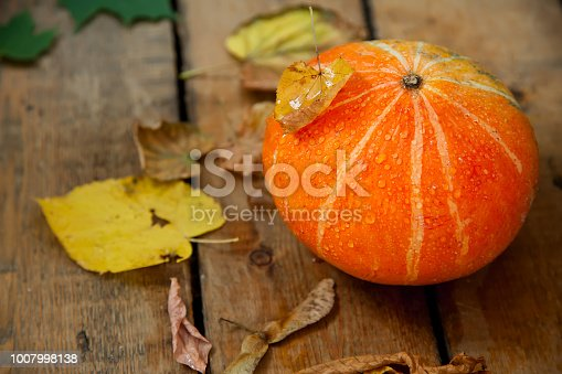 istock wet pumpkin with one dried yellow leaf in autumn wooden background 1007998138