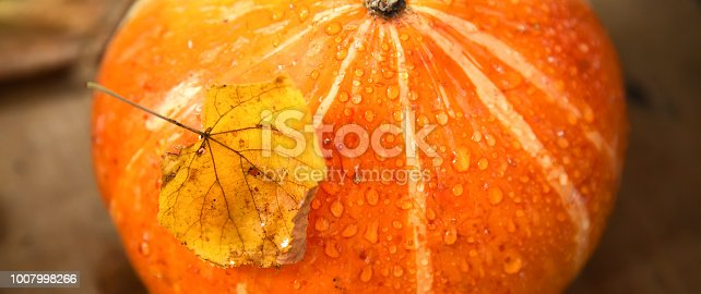 istock wet pumpkin with one dried yellow leaf in autumn wooden background 1007998266