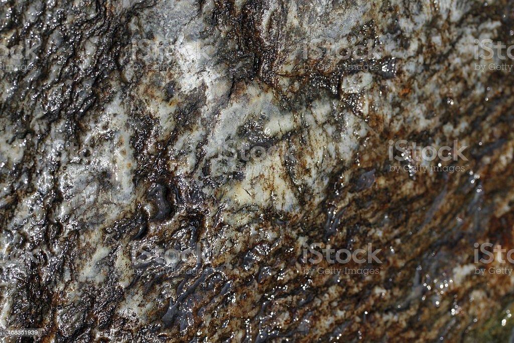 Wet rock royalty-free stock photo