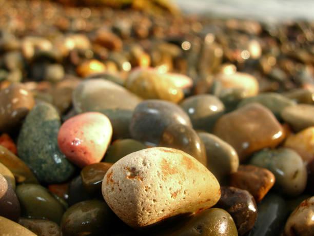 Wet sea stones – Foto